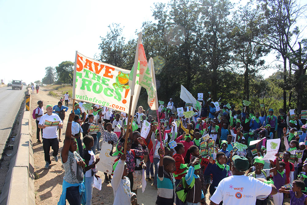 Diepsloot during the 2017 International Save The Frogs Day