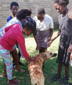 Diepsloot Greening club learning how to interact with dogs