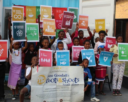 SDG's, CSI projects South Africa
